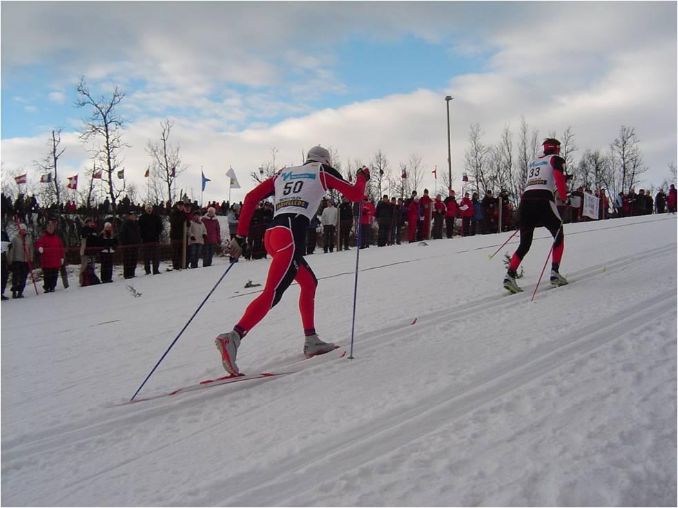 ski alté