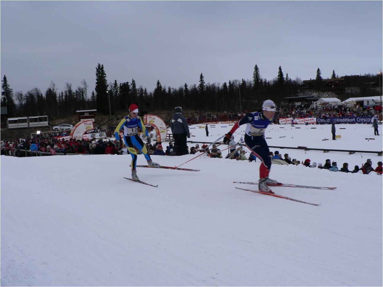 ski skate