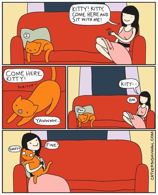 illustration yasmine cats vs human