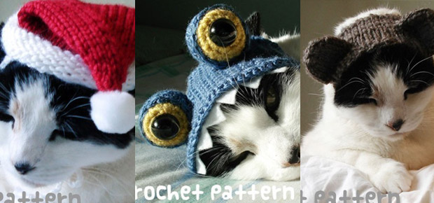 chat tricot costume halloween